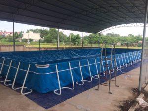 bể bơi di động lắp ghép chất lượng